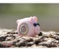 Großlochperle Schweinderl